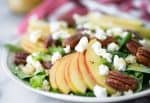 Fall Harvest Salad! A must make this fall. Mache lettuce, quinoa, apples, goat cheese, homemade honeyed pecans and a simple apple cider dressing. Vegetarian and Gluten-Free. | www.delishknowledge.com